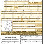 DS-11 passport form