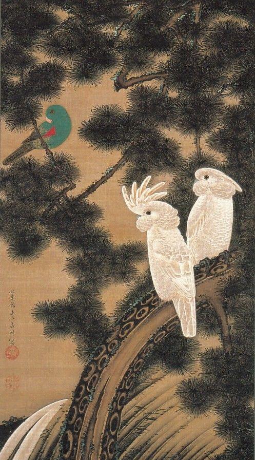 動植綵絵-12-老松鸚鵡図(ろうしょうおうむず)