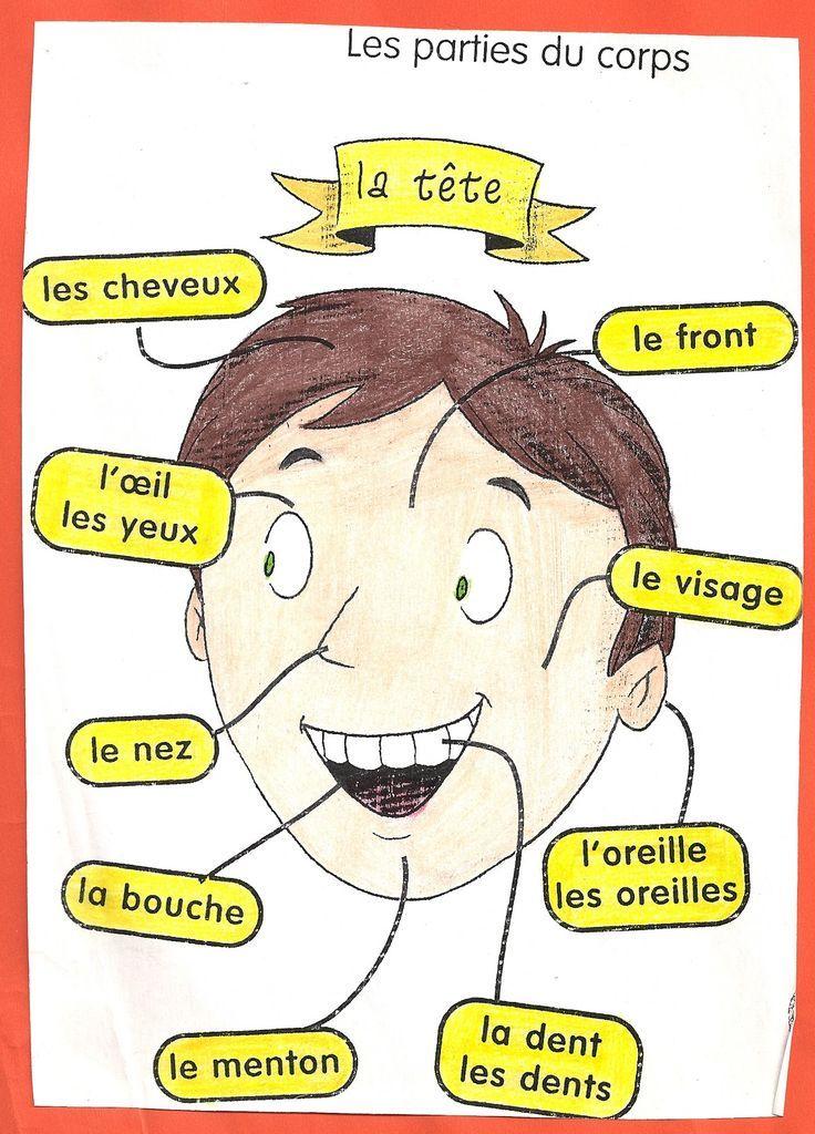 Franséisch / Français Kopiervorlage Visage / Gesicht
