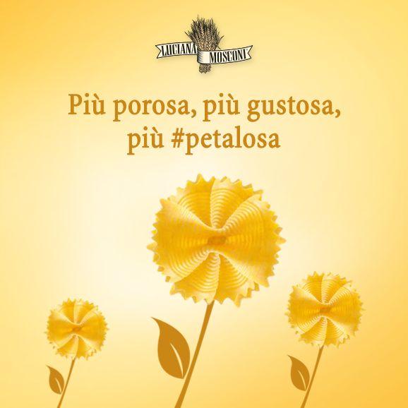 Adesso avete un nuovo aggettivo per il vostro formato di #pasta preferito: #petaloso! Vai Matteo, siamo tutti con te!   #farfalle #fiore #petali #fiori #flower #flowers #lucianamosconi #butterflies