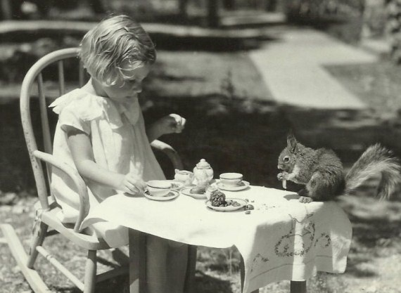 tea with mr. squirrel