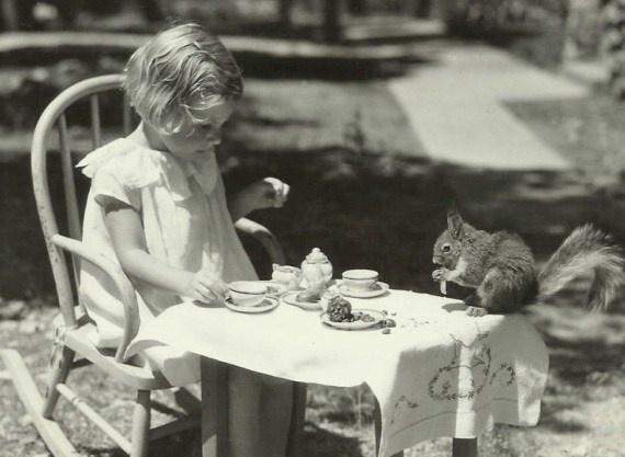 tea with mr. squirrel