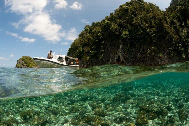 Diver's Paradise: Misool Eco Resort, Indonesia