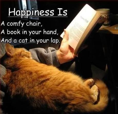 Happiness Is a comfy chair, a book in your hand, and a cat in your lap.