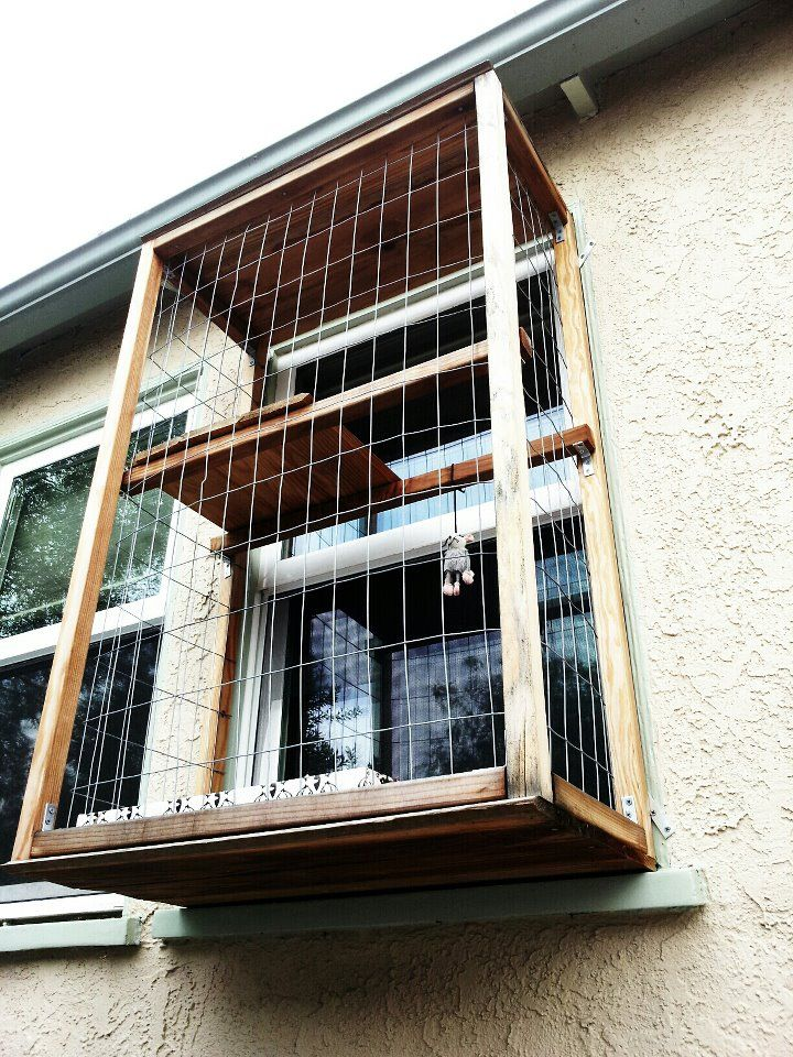 Cat balcony or catio cats pets courtesy of my yoga for Balconies or balconies