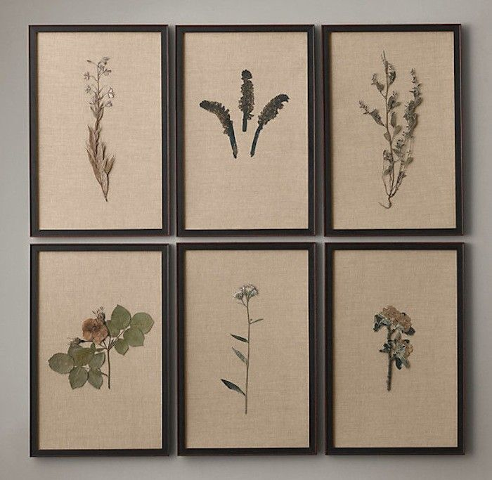Pressed botanical specimens on linen l Gardenista