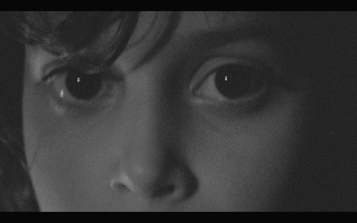 Feu! Chatterton // À l'aube