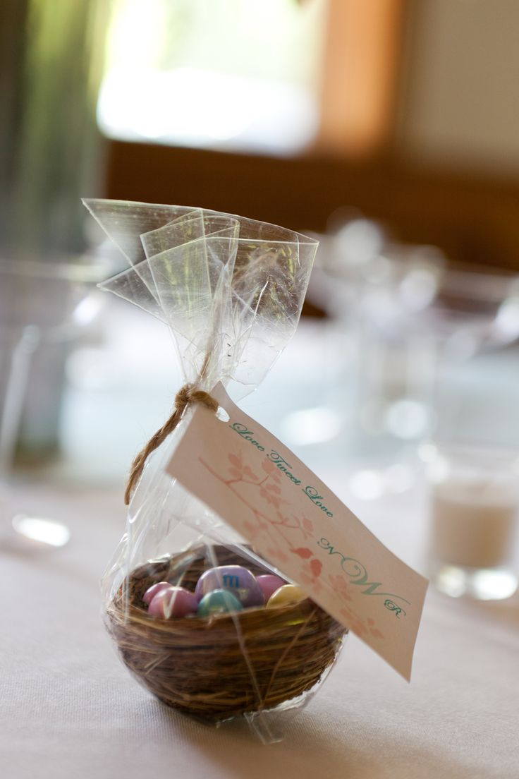 This is the one wedding favor we made. It was so fun and it turned out great. My husband designed the tag himself and I ordered the little nests in bulk. I found clear sucker bags at a local store for very cheap and then got pastel m&ms at easter time.