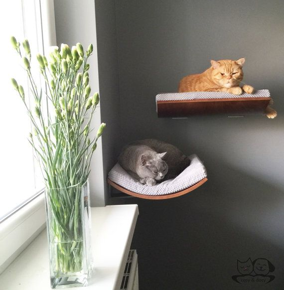 https://www.etsy.com/listing/223779548/curved-perch-cat-bed-cat-shelves-cat?ref=sr_gallery_5