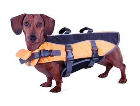 #Dachshund Life Jacket Wiener dog life jacket for #water sports. [I've met dachshunds who would be up for some waterskiing.]