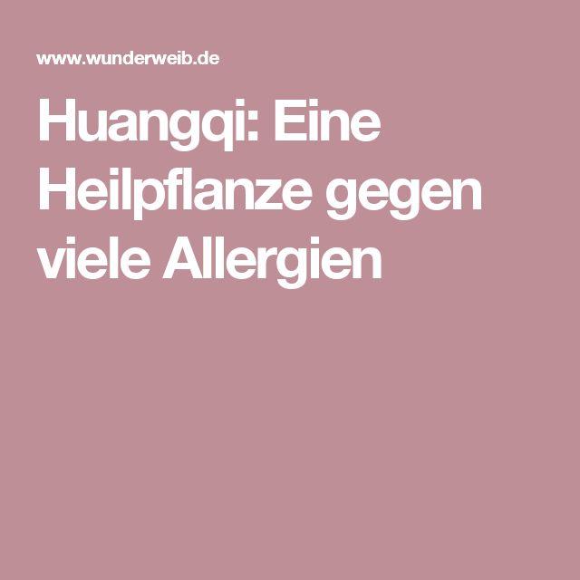 Huangqi: Eine Heilpflanze gegen viele Allergien