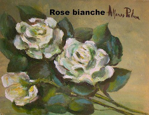 Rose bianche. Anno 1985 circa. Dipinto dal vero. Olio su tela a spatola. Dim. cm 25 x cm35. Autore Maestro Alfonso Palma