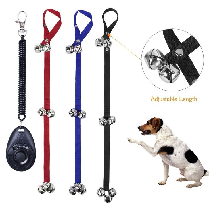 Maxi Dog Doorbells Premium Quality Dog House Training Bells Potty Bell Best  Pet Toys For Your ...