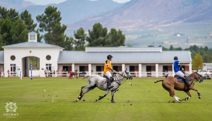 Thank you to everyone who joined us at Val de Vie Estate for the Veuve Clicquot Masters Polo 2016 and our incredible Shimmy after party! Beautiful venue for the day! Shimmy Polo  Team in action