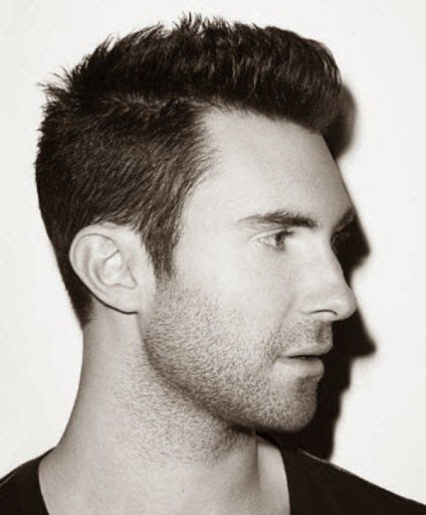 Adam Levine Side Pose in Spiked Short Hairstyle Look