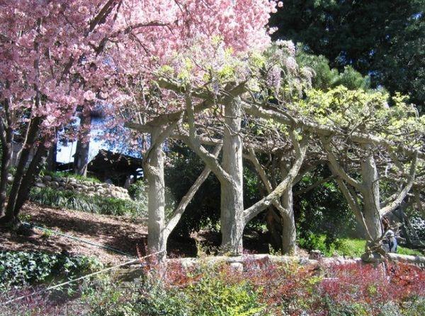 Faux Bois Beton : Faux Bois Concrete