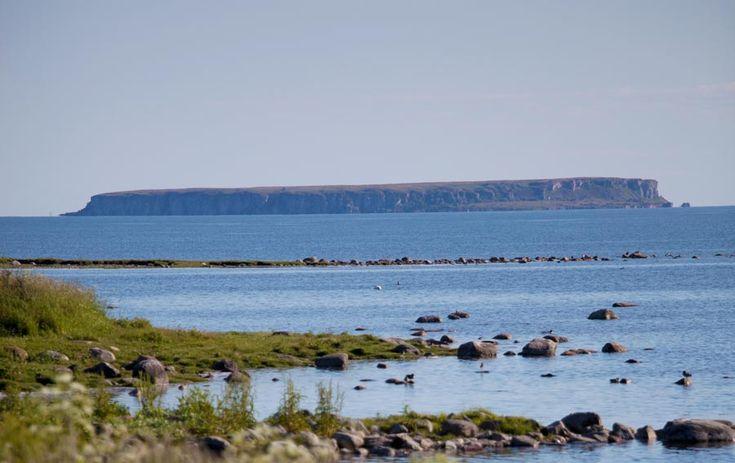 Ett av världens äldsta naturskyddade områden Stora Karlsö på Gotland.