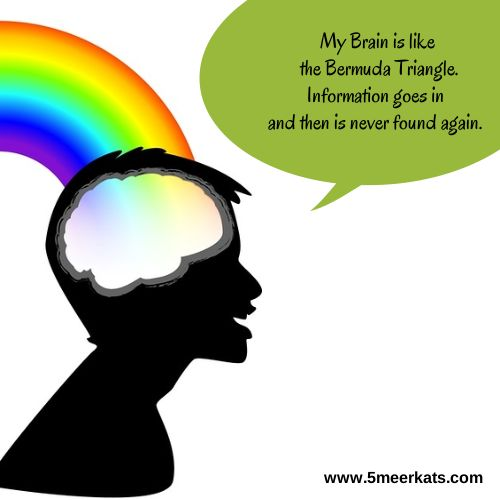 My Brain is like the Bermuda Triangle. Information goes in and then is never found again. #funny #brain