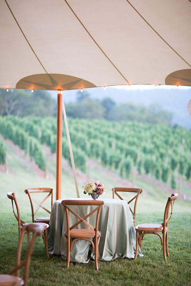 Wedding Venue Charlottesville VA | Pippin Hill Farm & Vineyards