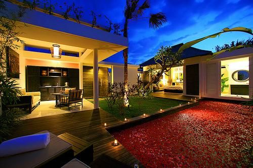 Luxe back yard