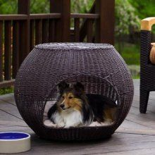 End table and dog bed in one - this is one of the first one of these that I have actually liked.  Would be great on our deck