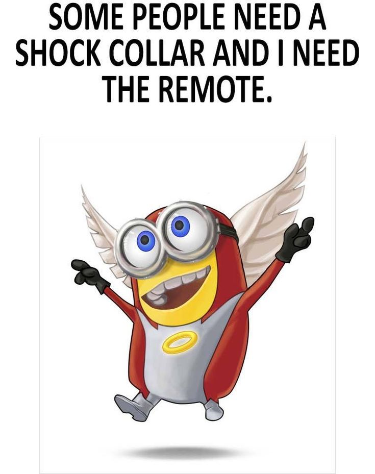 Some people need a shock collar and I need the remote. - minion