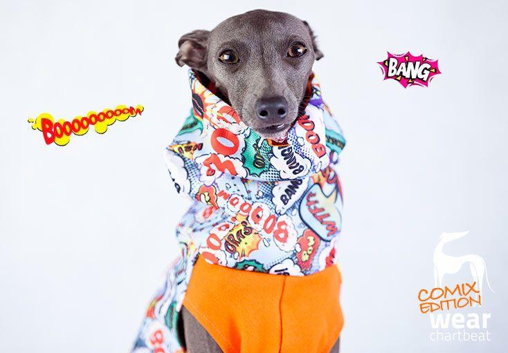 Charcik włoski #comics #italiangreyhound #dogwear #charcikwloski
