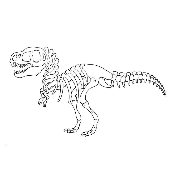 динозавры скелеты раскраски распечатать детям кажется