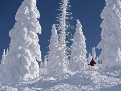 Steamboat Springs, Co./COLDEST ski trip!!!