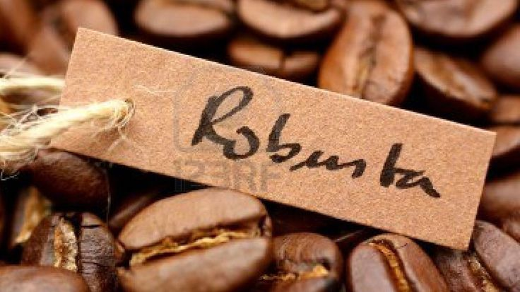 vietnam robusta coffee story - Google Search