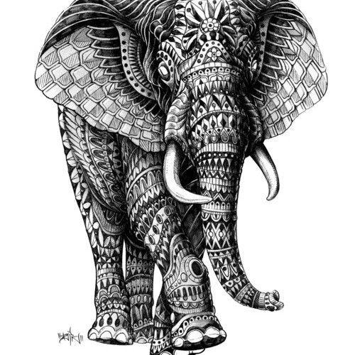 13 best Chalk ideas images on Pinterest | Elephants, Indian ...