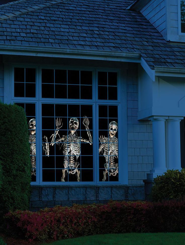 This is the projector that displays animated, three-dimensional paranormal Halloween scenes or jubilant Christmas scenes out a window or on a wall. The included projector displays lifelike zombies,…