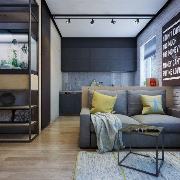 One Room Apartment: Apartment Designs For A Small Family, Young Couple And A