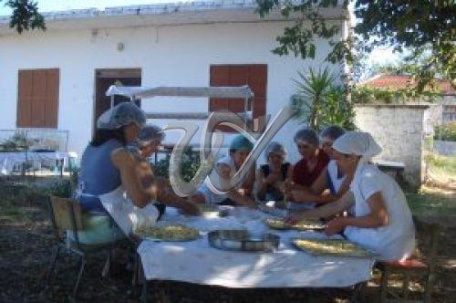 Αγροτικός Γυναικείος Συνεταιρισμός Γυμνότοπου