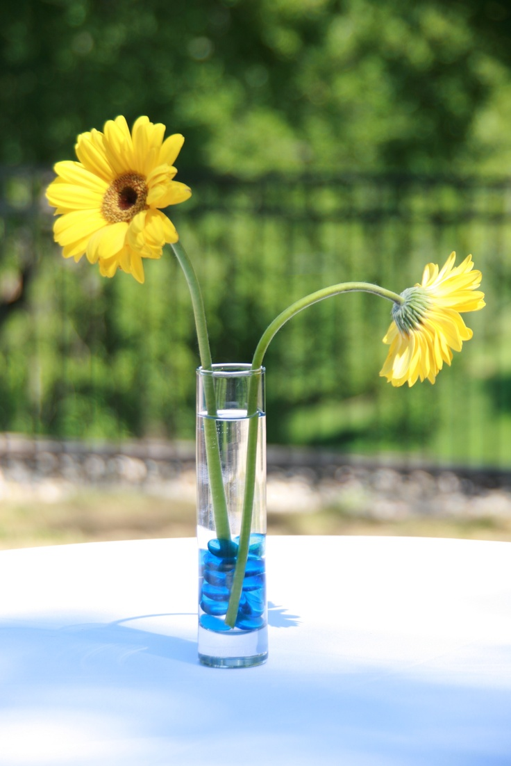Gerbera daisy centerpieces graduation party ideas