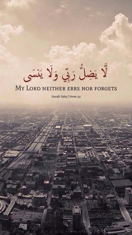 my lord neither errs nor forgets.