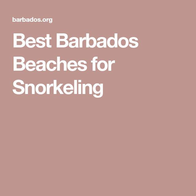 Best Barbados Beaches for Snorkeling