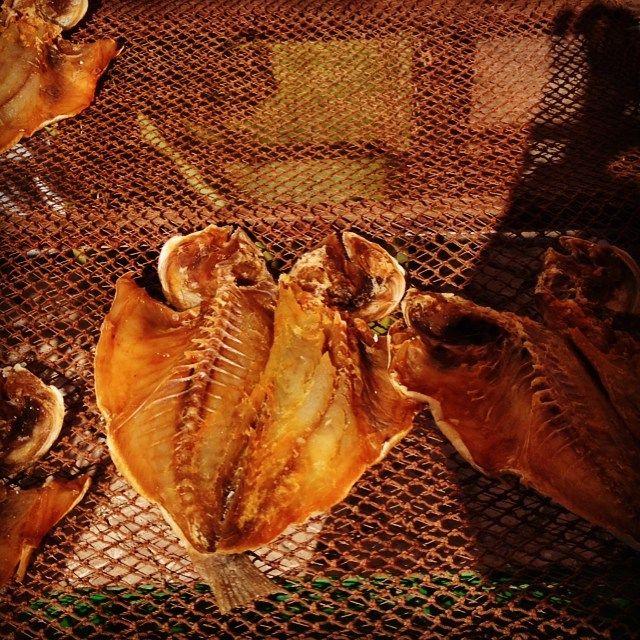 Peniche#travel #portugal #fish#lourézio#dazulterra