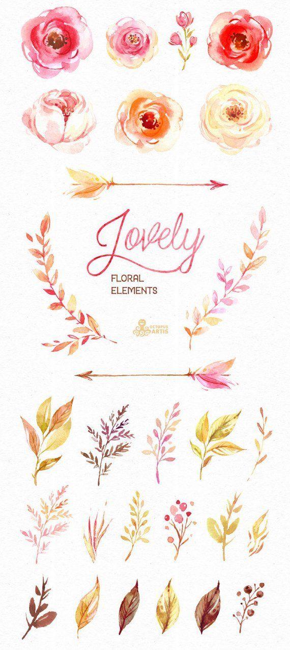 Wunderschone Blumen Getrennte Florale Elemente Aquarell Clipart
