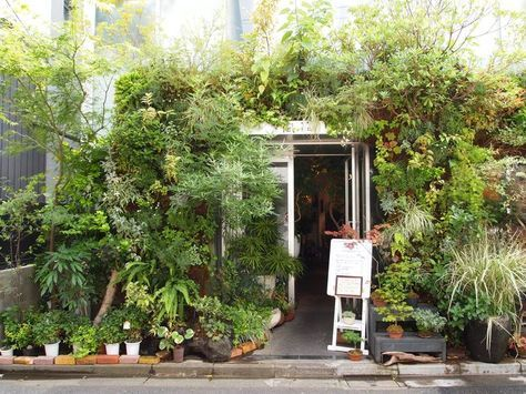 17 best Tokyo cafe images on Pinterest | Flower cafe, Plant nursery ...