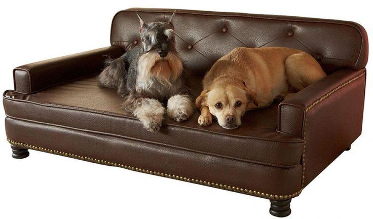 Geweldige bedden voor honden