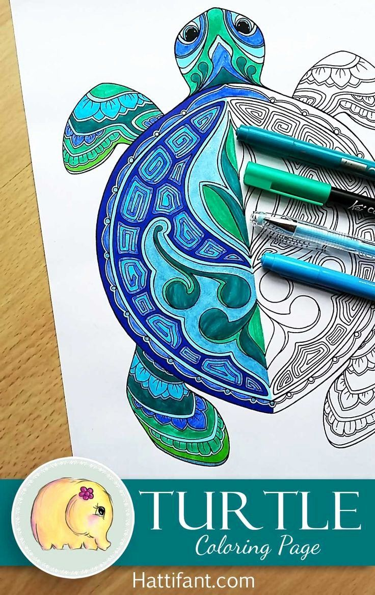 Free Printable Turtle Coloring Pages New Turtle Coloring Page Line Art Di 2020 Sketsa