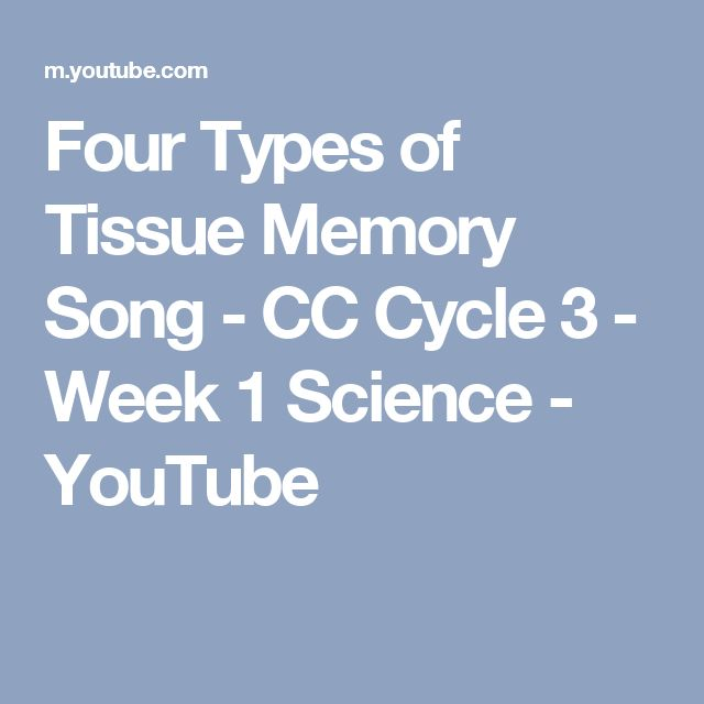 Four Types of Tissue Memory Song - CC Cycle 3 - Week 1 Science - YouTube