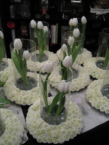 Oh how pretty~ i love tulips
