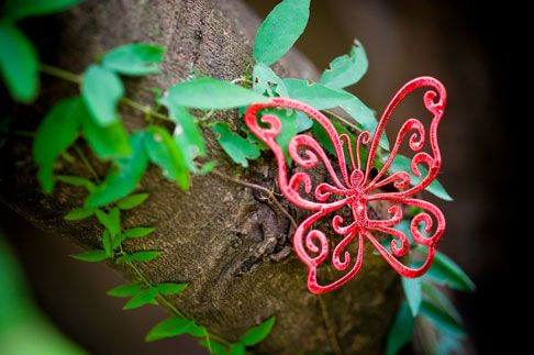 Wire Art: Intricate red wire butterfly by Sarah Jansma