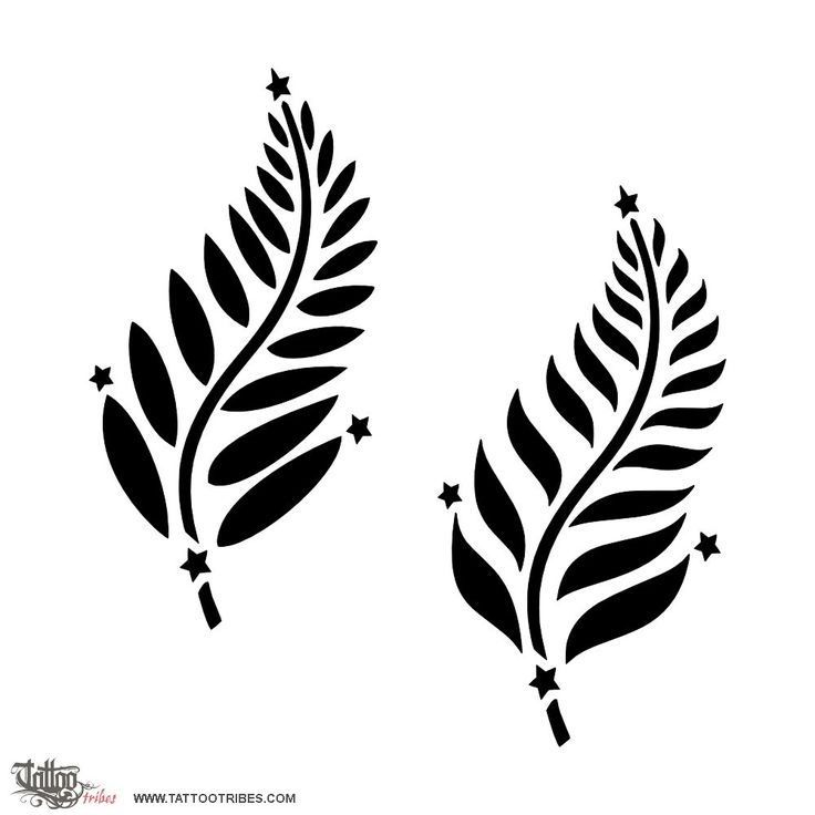 Silver fern & Southern Cross  Michael is Australian living in New Zealand and he asked thus for a tattoo that would mix the Southern Cross and the silver fern. Given the similar shape of the two, we thought they could be blended by having the stars at the edges of the fern.  http://www.tattootribes.com/index.php?newlang=English&idinfo=7303