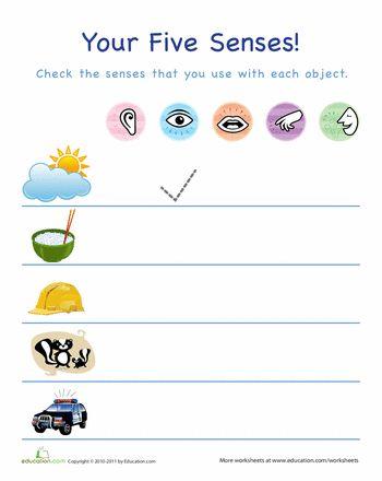 15 besten Five Senses Bilder auf Pinterest | Unterricht ideen ...