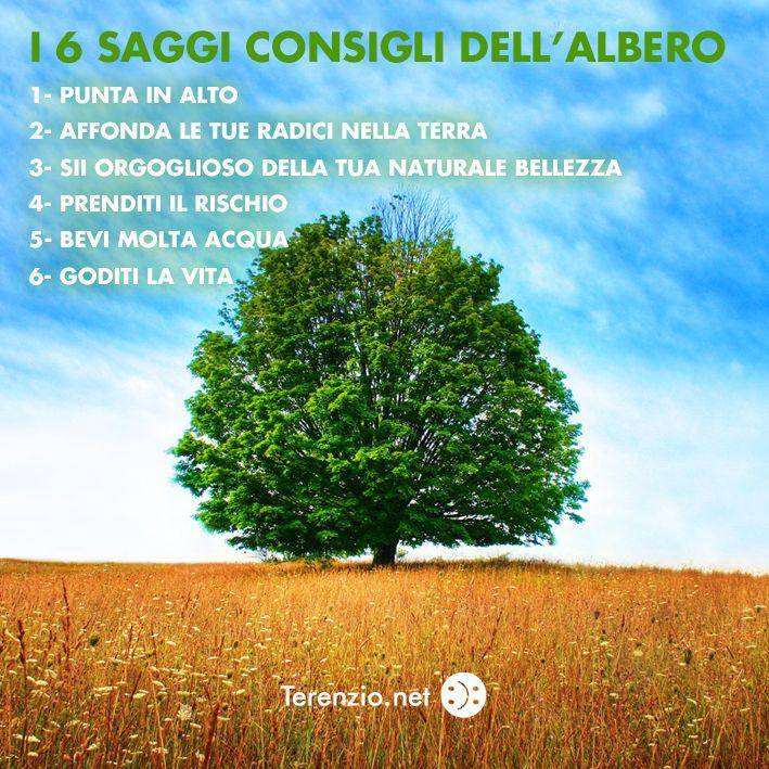 #15 #SoloCoseBelle #DaiCheCeLaFacciamo www.terenzio.net
