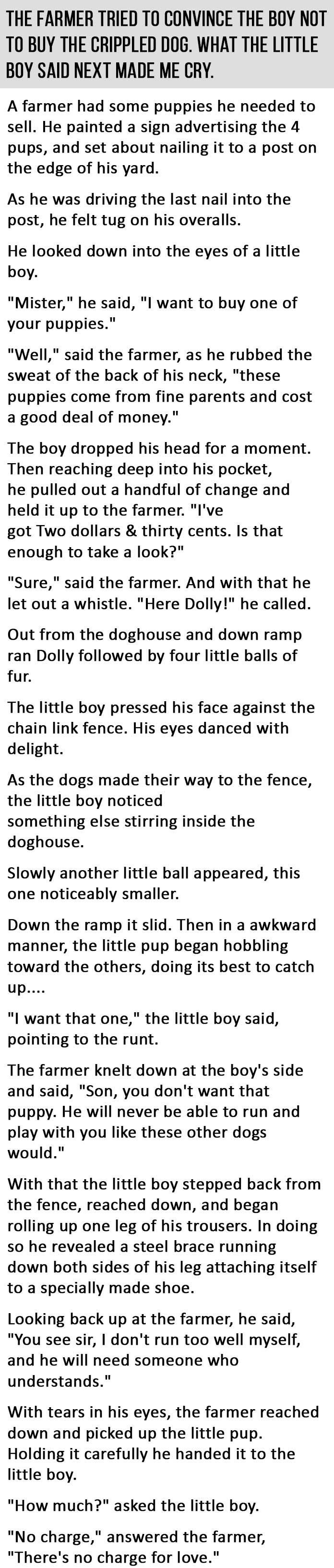 Read this quite sometime back, still make me shed a tear.
