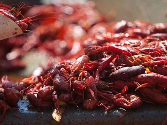 Frank Davis' recipe for perfectly boiled crawfish